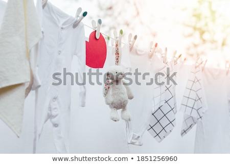 Plastic cloth pegs Stock photo © dezign56
