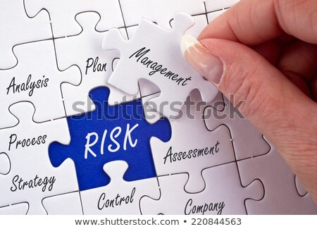 Risk - Text on Blue Puzzles. Stock photo © tashatuvango