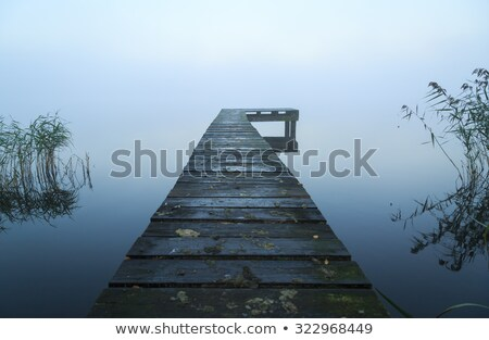 старые пирс побережье острове Балтийское море Сток-фото © olandsfokus