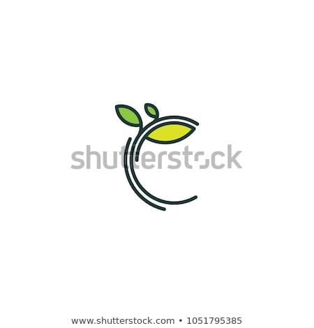 Foto stock: Ecologia · logotipo · negócio · flor · árvore · mão