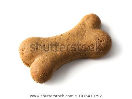 ossos · cão · comida · osso - foto stock © digifoodstock