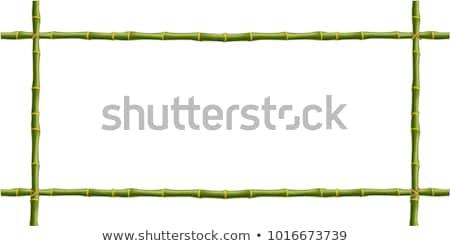 квадратный · бамбук · кадр · плетеный - Сток-фото © bluering
