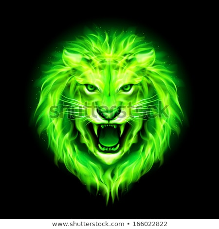 scary · leone · testa · occhi · isolato · bianco - foto d'archivio © cidepix