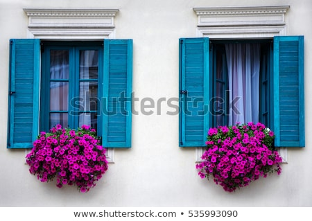 windows with flowers in old house stock photo © vapi
