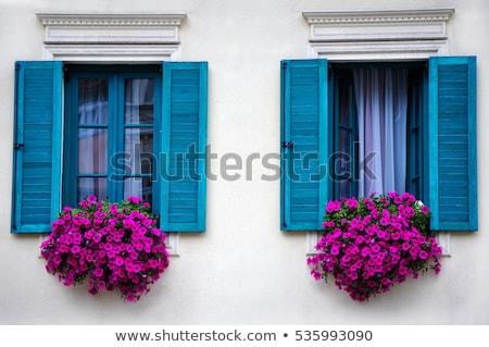 Pencereler çiçekler eski ev Venedik duvar dizayn Stok fotoğraf © vapi