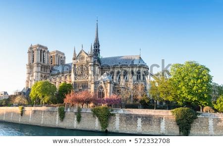 Notre Dame Katedrali nehir ünlü işaret Paris Fransa Stok fotoğraf © Anneleven