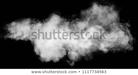 Photo of fire with a smoke on a black background  Stock photo © cookelma