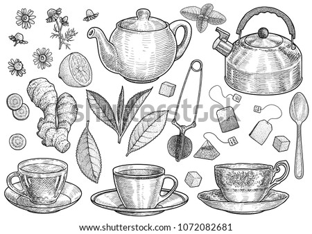 glass tea pot with tea bag stock photo © arrxxx