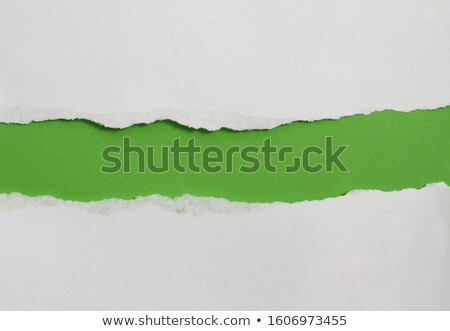 ripped green paper torn stock photo © adamson