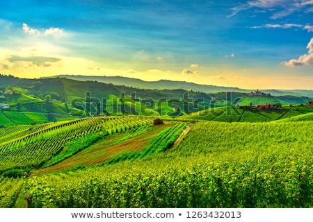 Barolo, Piedmont, Italy Stock photo © phbcz