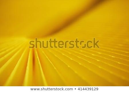 Stockfoto: Auto · filteren · lucht · geïsoleerd · witte