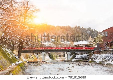 Stad Japan sneeuw boom bos Stockfoto © rufous
