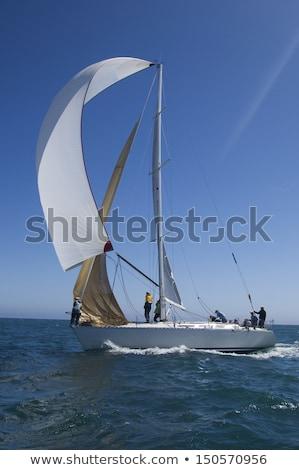 Yacht Sail Billowing Stock photo © silkenphotography