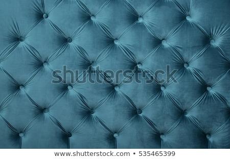 diamond in the blue velvet Stock photo © jonnysek
