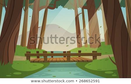 Fából készült híd erdő fa fa Stock fotó © njnightsky
