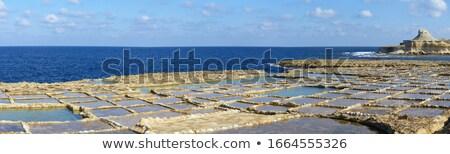 Panoramik görmek tuz su deniz okyanus Stok fotoğraf © eleaner