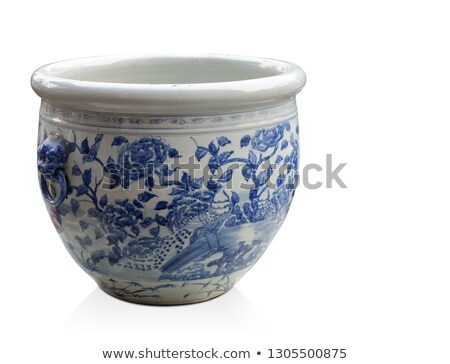 A pot with blue flowers Stock photo © bluering