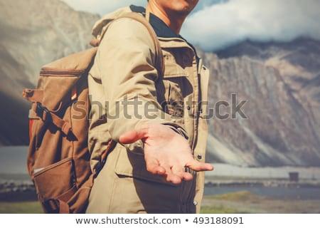 hands for help in blue tones Stock photo © Olena