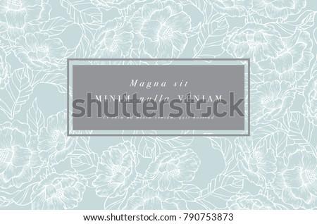 résumé · rouge · pavot · blanc · noir · printemps · papillon - photo stock © frescomovie
