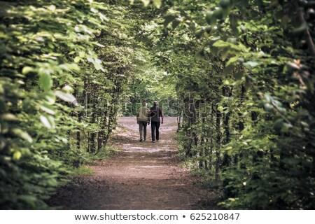 зрелый пару ходьбе далеко вместе небе Сток-фото © IS2