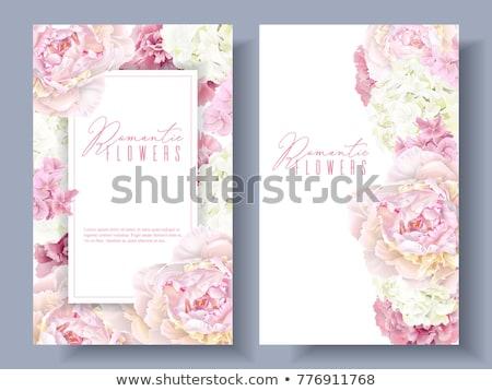 Mooie roze bloemen exemplaar ruimte top Stockfoto © Illia