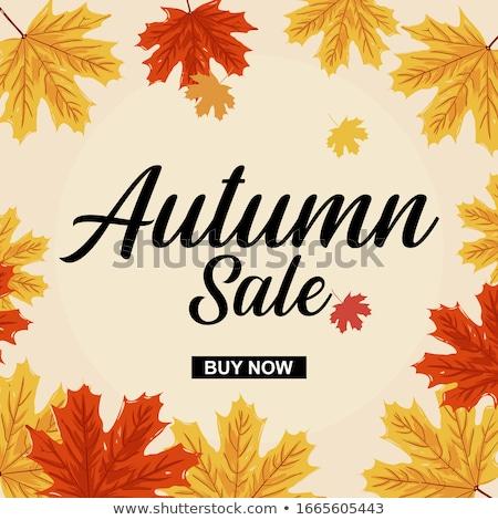Hello autumn leaf template Stock photo © colematt