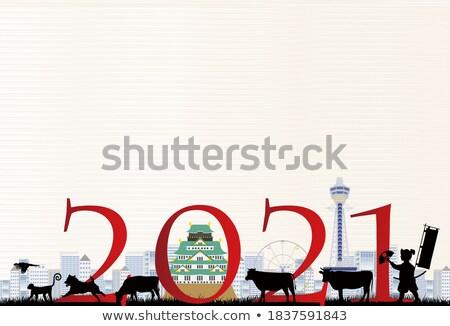 鳥 新年 明信片 插圖 火 煙花爆竹 商業照片 © adrenalina