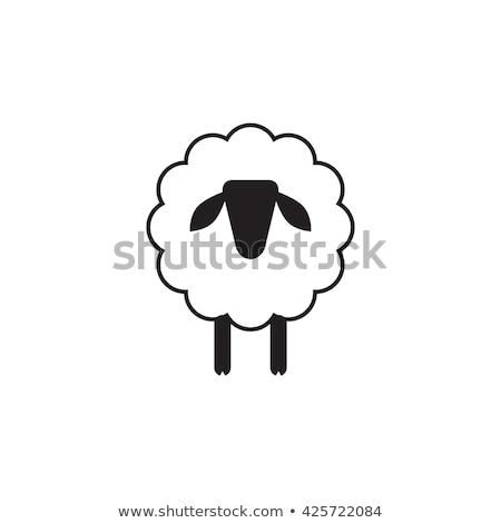 Funny Ram Sheep.Modern Flat Design Vector Illustration Stock photo © hittoon