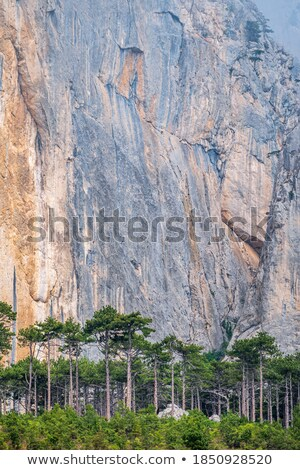 Detail of the stone boulders on the mountain slope Stock photo © boggy