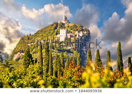 castle ruins above the cliffs Stock photo © morrbyte
