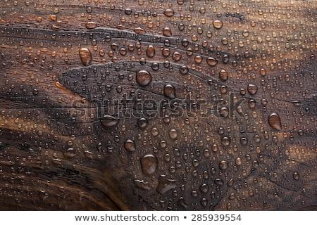 ıslak ahşap atış havlama doku Stok fotoğraf © iTobi