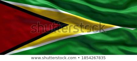 флаг · Гайана · иллюстрация · карта · Мир · путешествия - Сток-фото © harlekino