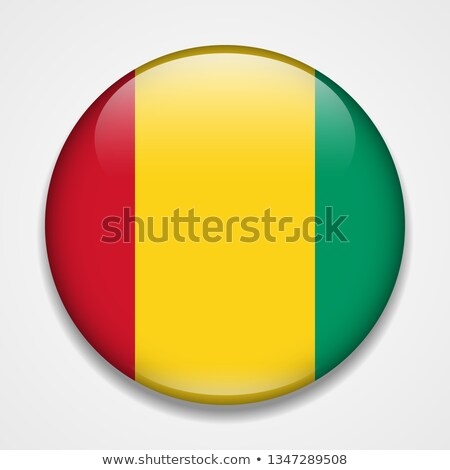 Guinea Flag icon. Stock photo © zeffss