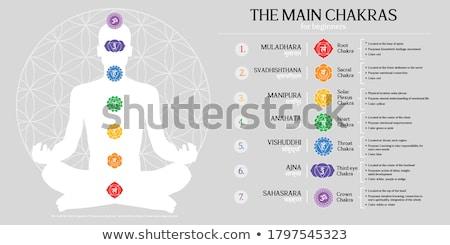 Siete mujer fondo silueta loto religiosas Foto stock © adrenalina