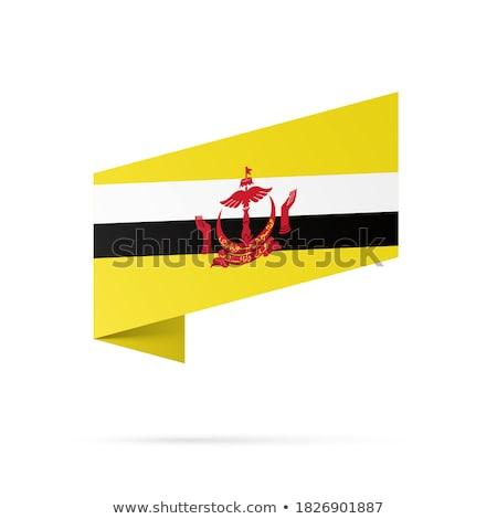 Mapa bandera botón Brunei vector imagen Foto stock © Istanbul2009