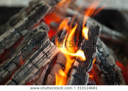 Beautiful Fire With Flames Charred Wood Stock fotó © mcherevan