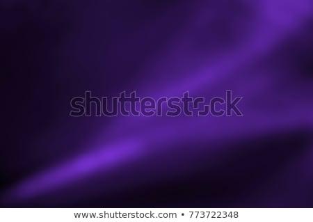 Violet elegantie schoen portemonnee sieraden handschoenen Stockfoto © Fisher