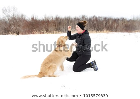 woman with dog for Canicross in winter give food Stock photo © Lopolo