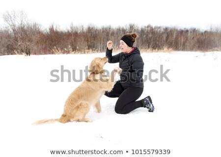女性 · を実行して · 犬 · 森林 · 若い女性 · 夏 - ストックフォト © lopolo