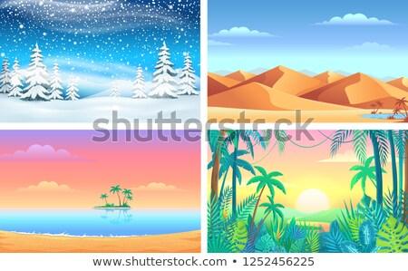 Természet tájkép különböző éghajlat illusztráció tavasz Stock fotó © bluering