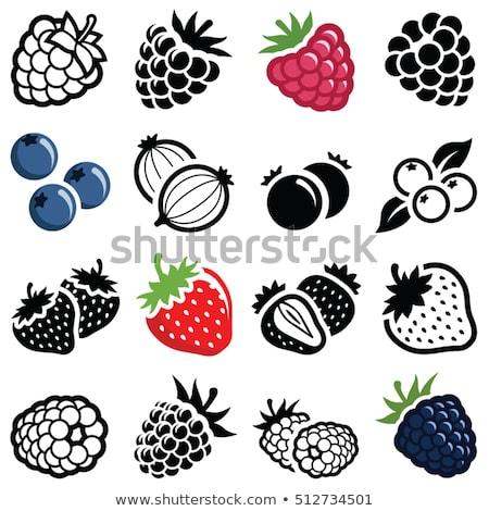 Ahududu böğürtlen ikon meyve içmek Stok fotoğraf © bspsupanut