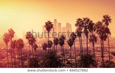 Foto stock: Los · Angeles · linha · do · horizonte · céu · edifício · fundo · silhueta