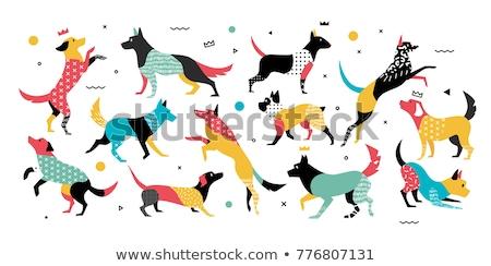 geometric shapes with dogs characters set Stock photo © izakowski
