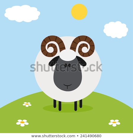 Cute White Sheep With Flower On A Hill Modern.Flat Design Stock photo © hittoon