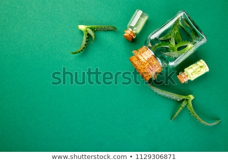aloe vera oil in glass bottle and towel for spa stock fotó © illia
