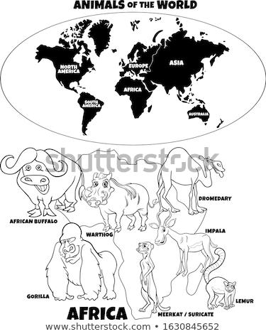 impala cartoon animal character coloring book page Stock photo © izakowski