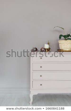 Chic borst home planten decoratie Stockfoto © ruslanshramko