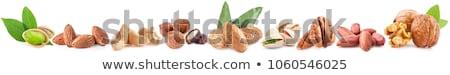 Essiccati frutta dado raccolta salute alimentare Foto d'archivio © marilyna