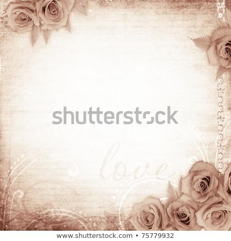 steeg · tuin · sepia · bloem · blad - stockfoto © anna_om