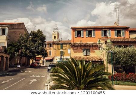 Vineyard and village of Le Castellet stock photo © Musat